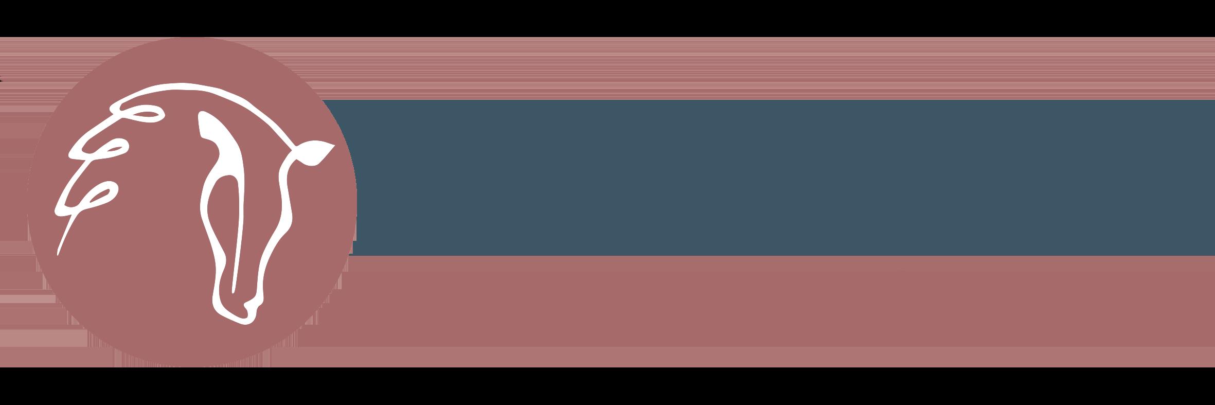 Hippische Sportoefentherapie Goes